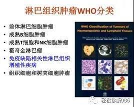 免疫缺陷相关性淋巴组织增殖性疾病(1)