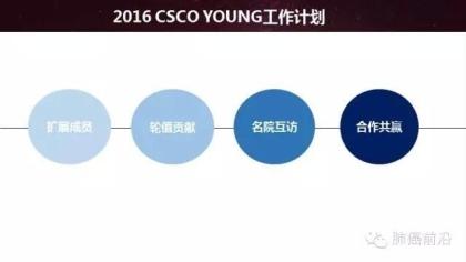 CSCO Young(中国临床肿瘤学青年委员会)肺癌2015年总结和2016年计划