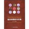 中华医学会病理学分会第二十次学术会议暨第四届中国病理年会见闻