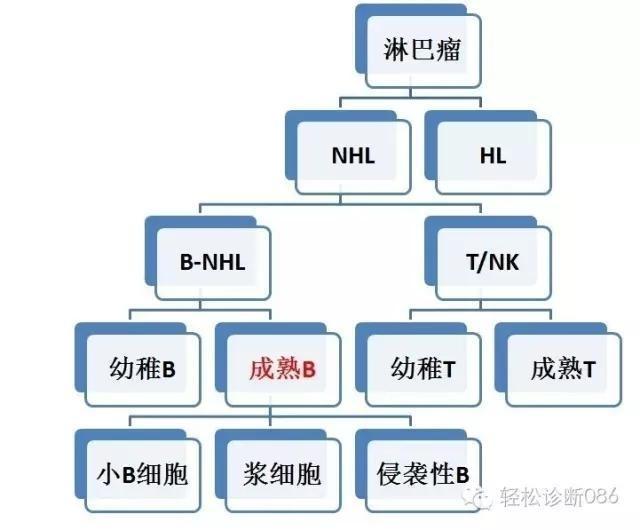 小B细胞NHL——FL(1)
