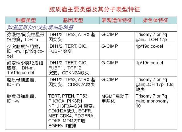 [病理诊断]广东省人民医院李智:胶质瘤的病理诊断 从组织学表型到分子表型
