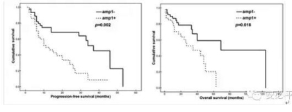 多发性骨髓瘤(MM)基因异常(FISH)检测