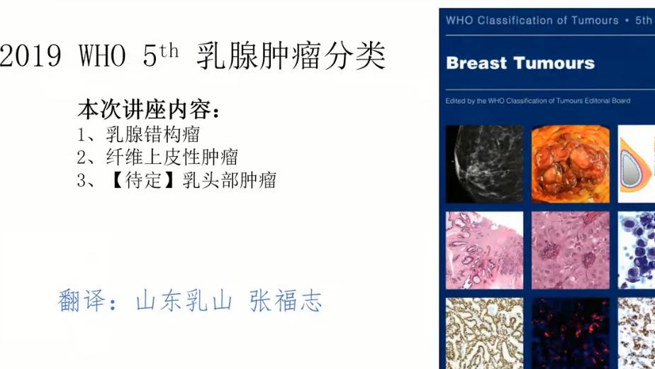 乳腺WHO第五版:纤维上皮性肿瘤和错构瘤