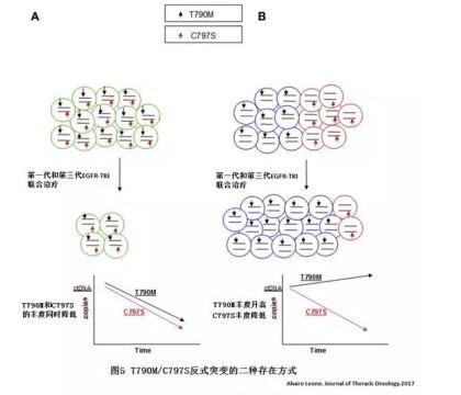 T790M和C797S反式突变的不同类型