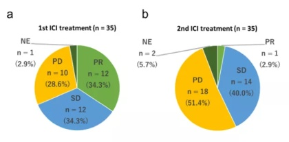 肺癌免疫治疗在过去十年里的5大进展