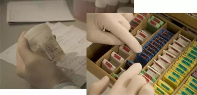 解放苦苦做标记的双手,唯一的 ID 每个标本都值得拥有