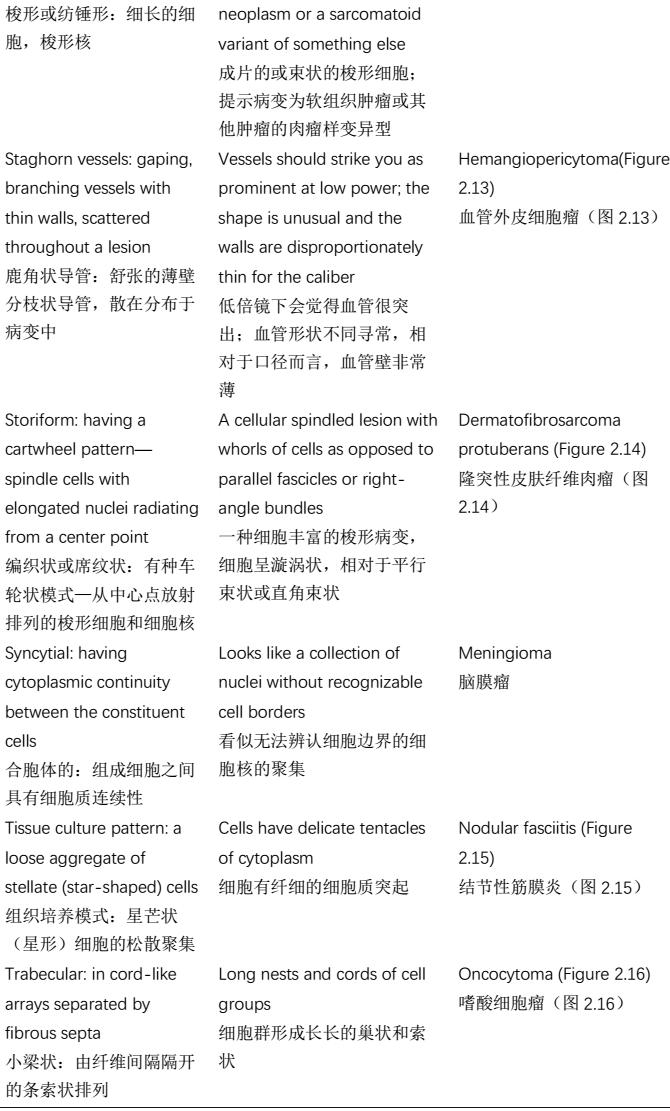 初学者福利!解剖病理学描述性术语,中英对照