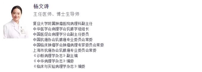【2019 CSCO】杨文涛教授专访:不畏挑战,只为追寻疾病真相