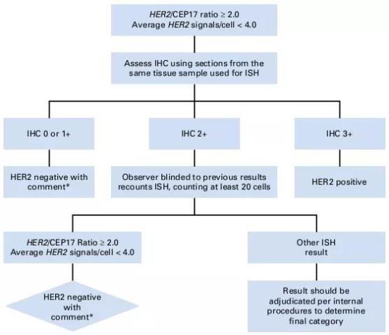 乳腺癌诊疗规范(2018年版)
