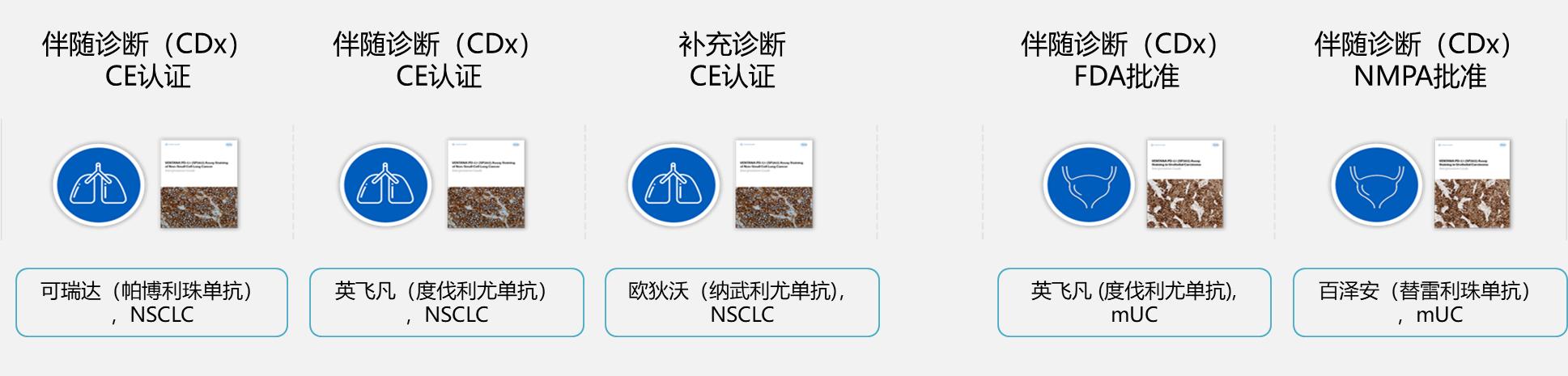 VENTANA PD-L1(SP142)非小细胞肺癌适应症获批上市